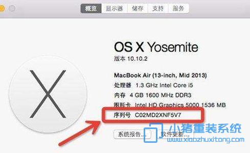 如何查看苹果电脑的序列号和激活时间